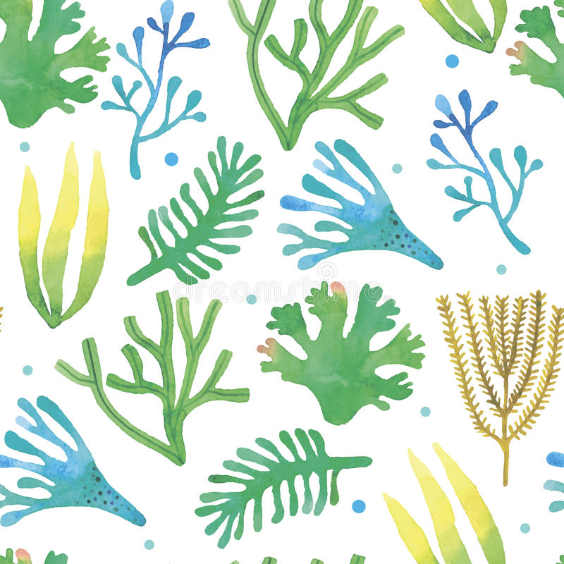 Modèle sans couture d'algues d'aquarelle illustration de vecteur