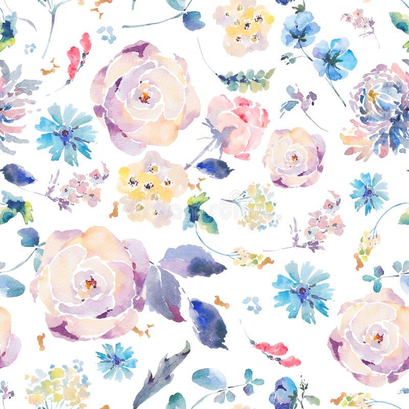 Modèle sans couture d'aquarelle avec des chrysanthèmes, roses illustration stock