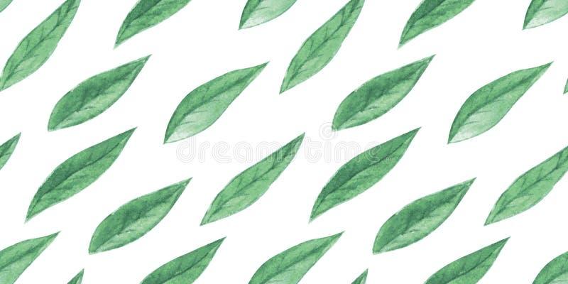 Modèle sans couture d'aquarelle avec des feuilles illustration stock