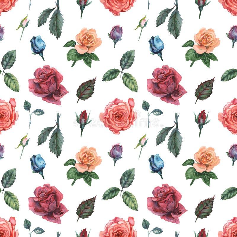 Modèle sans couture d'aquarelle avec des fleurs et des feuilles d'isolement sur le fond blanc illustration libre de droits