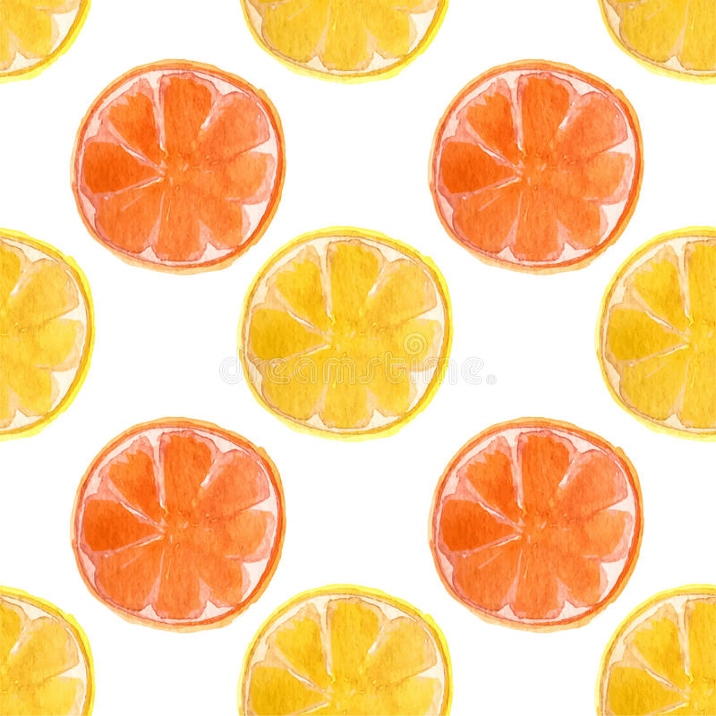 Modèle sans couture d'aquarelle avec des oranges et illustration stock