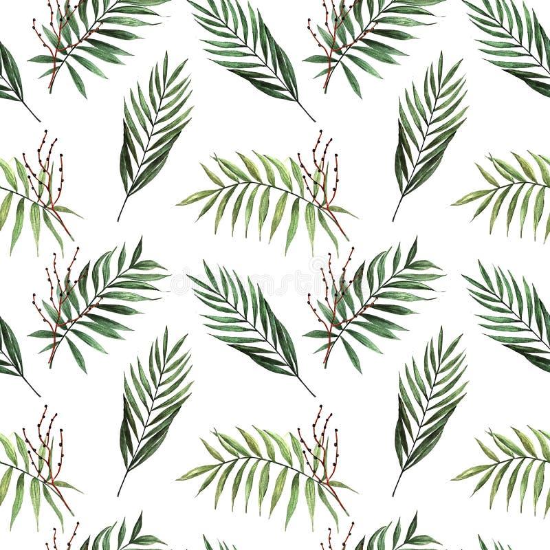 Modèle sans couture d'aquarelle avec des palmettes avec des graines illustration libre de droits