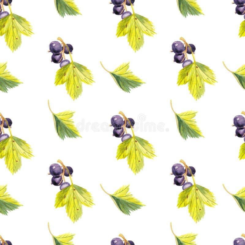 Modèle sans couture d'aquarelle avec les cassis et les leafes illustration stock