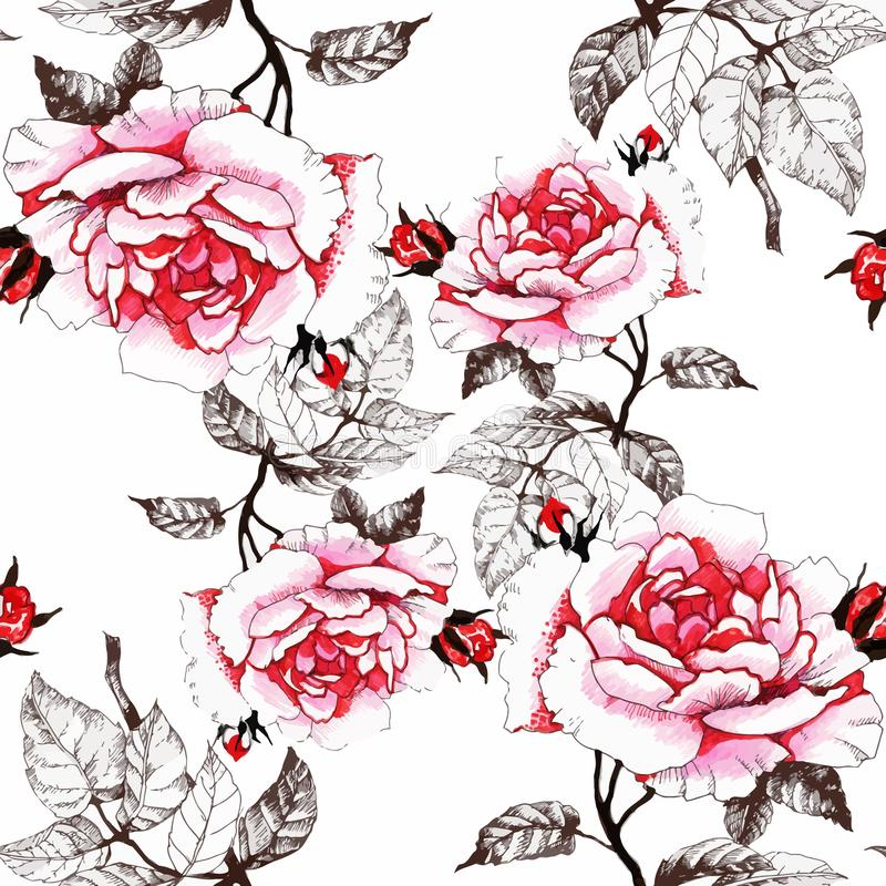 Modèle sans couture d'aquarelle avec les fleurs et les feuilles colorées sur le fond blanc, modèle floral d'aquarelle, fleurs ded illustration libre de droits