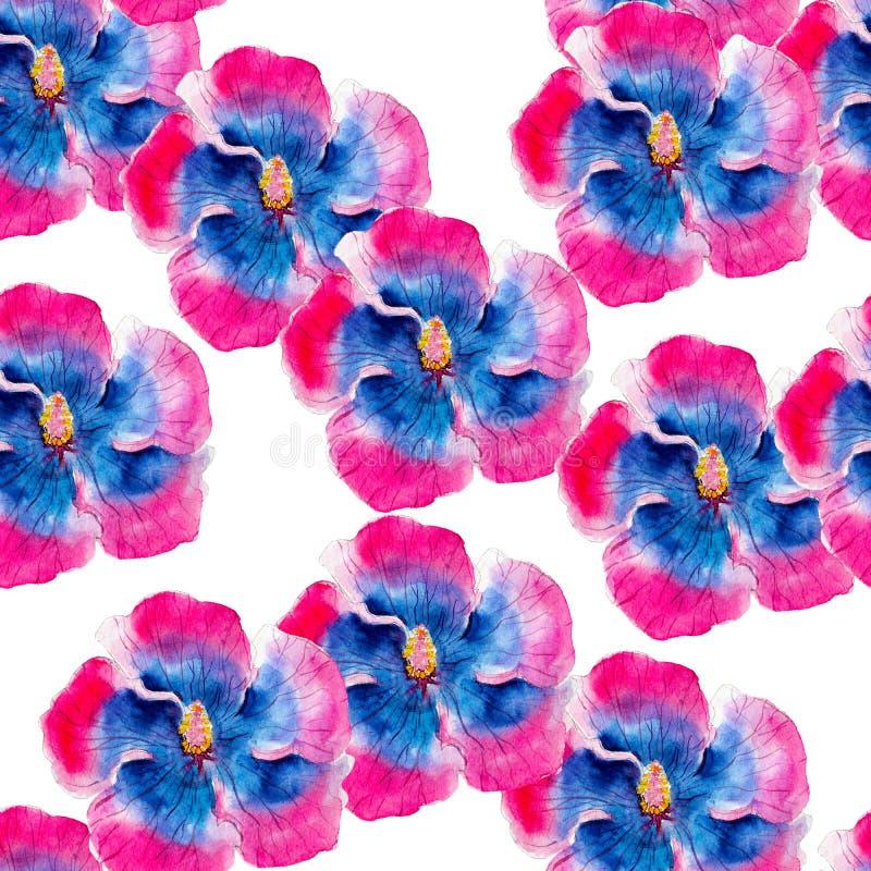 Modèle sans couture d'aquarelle de fleur de ketmie Fleurs tropicales lumineuses d'isolement sur le fond blanc, conception tirée p illustration libre de droits
