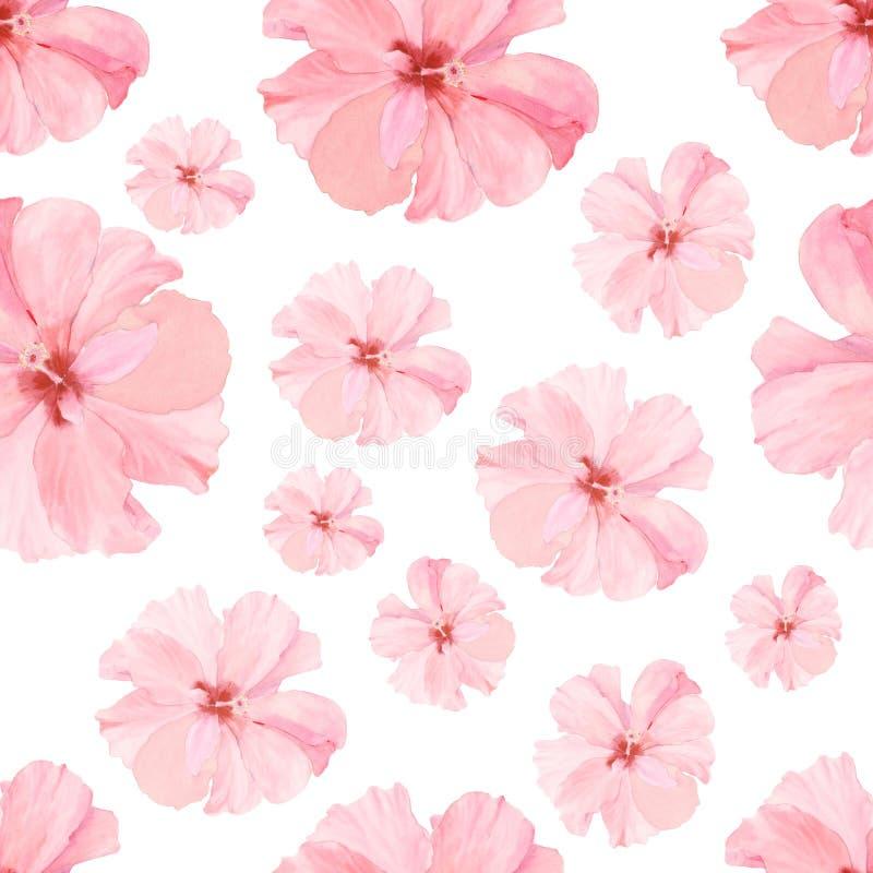 Modèle sans couture d'aquarelle de vintage avec le hibiskus rose L'illustration botanique naturelle d'aquarelle avec l'été fleuri illustration de vecteur