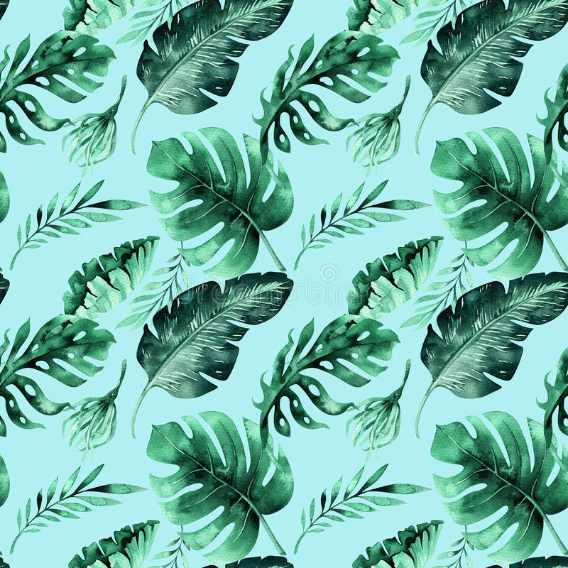 Modèle sans couture d'aquarelle des feuilles tropicales, jungle dense Ha illustration stock