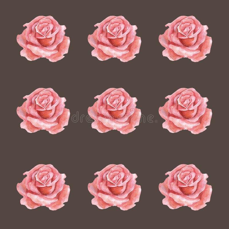 Modèle sans couture d'aquarelle des roses stupéfiant des éléments de conception illustration stock