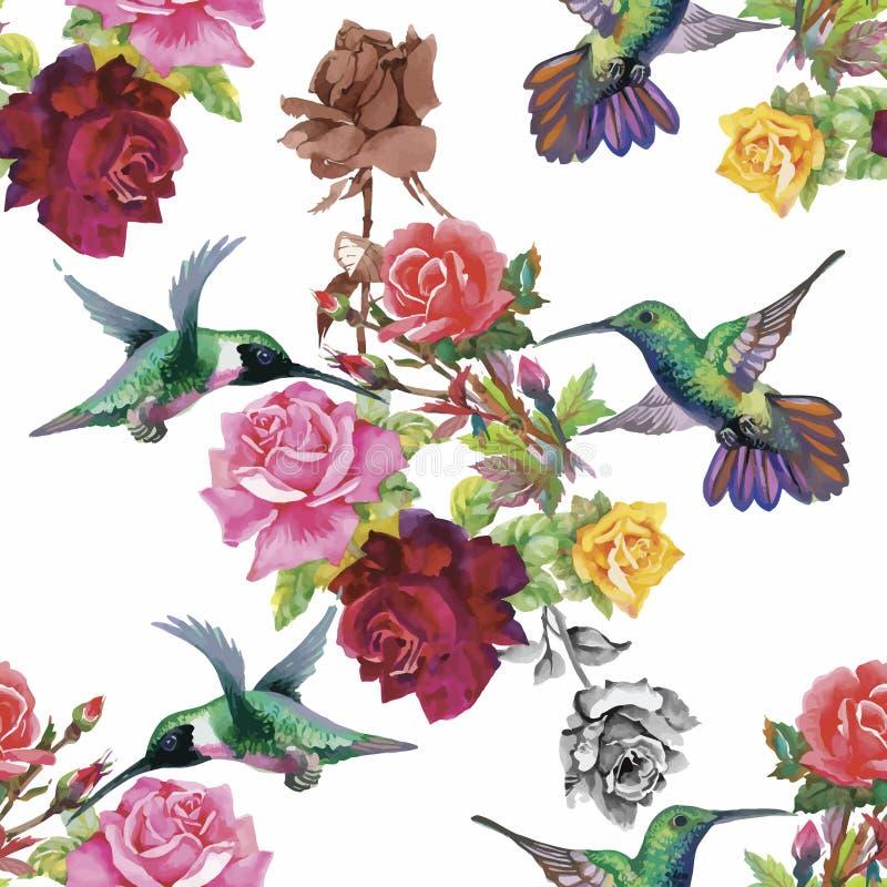 Modèle sans couture d'aquarelle florale tropicale avec des colibris et des fleurs Peinture d'aquarelle illustration libre de droits