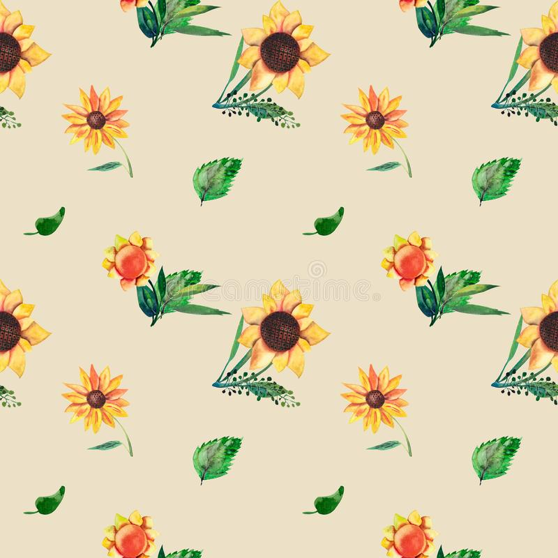 Modèle sans couture d'aquarelle sur le fond beige Tournesols, feuilles et herbes sauvages Calibre pour le T-shirt, décor illustration stock