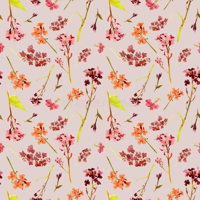 Modèle sans couture d'aquarelle tirée par la main avec les fleurs de champ et de pré et les herbes oranges et rouges sur le fond  illustration libre de droits