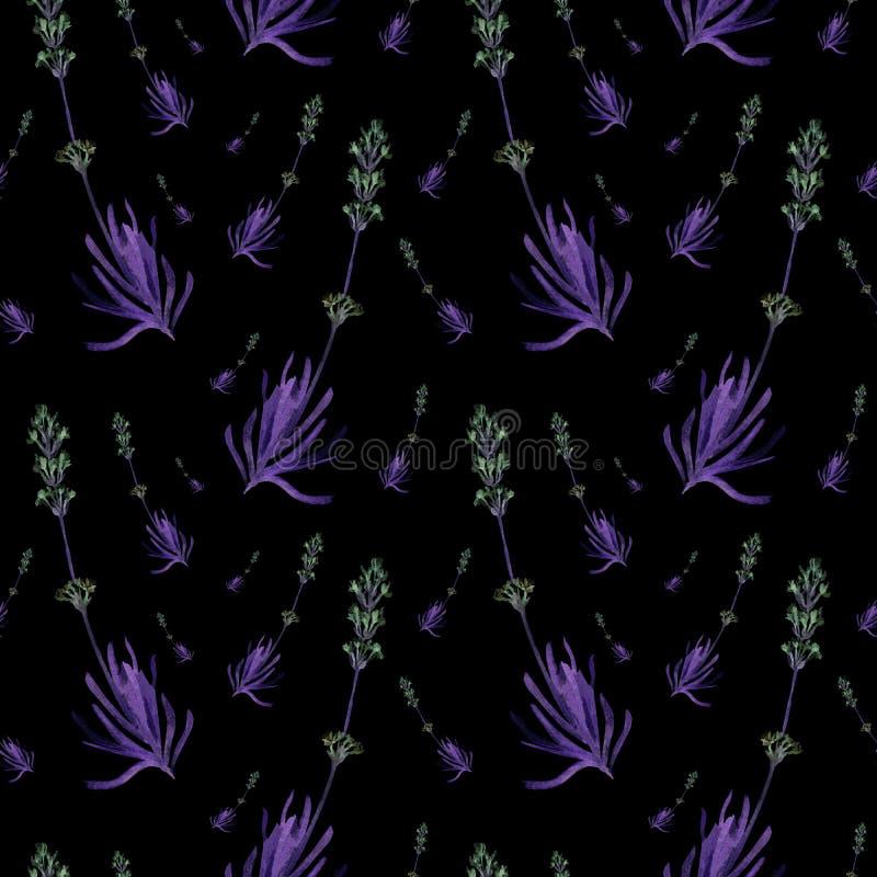 Modèle sans couture d'aquarelle tirée par la main de lavande de ressort sur un fond noir Illustration foncée de champ mignon de p illustration libre de droits