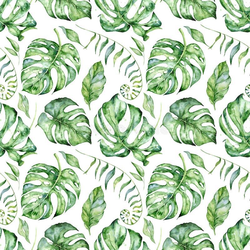 Modèle sans couture d'aquarelle tropicale avec l'illustration verte de feuilles illustration libre de droits