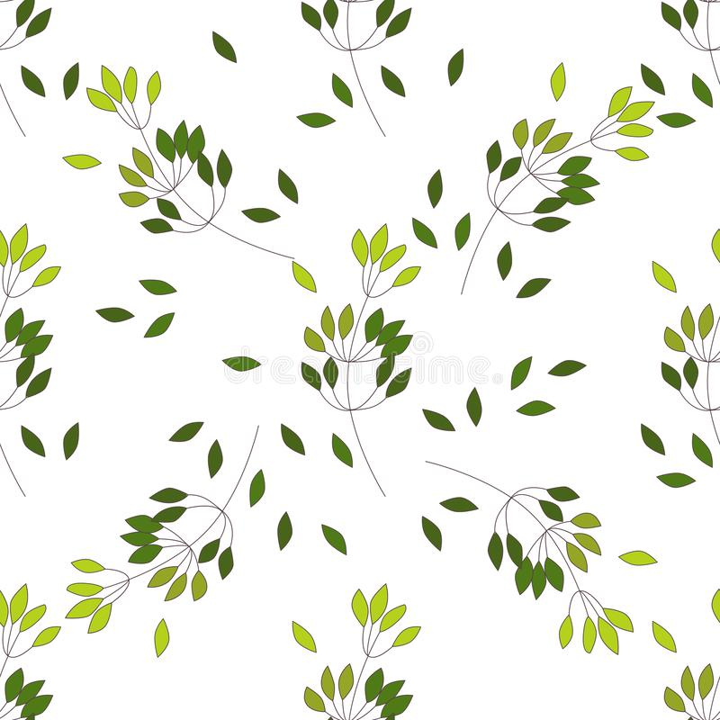 Modèle sans couture d'arbre différent de fougère de paume d'eucalyptus, branches naturelles de feuillage, feuilles vertes, herbes illustration de vecteur