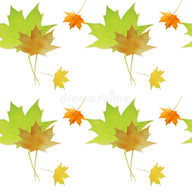 Modèle sans couture d'automne d'aquarelle L'érable part du fond coloré illustration de vecteur