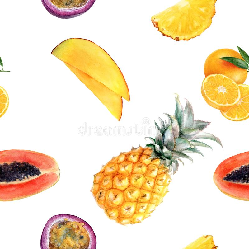 Modèle sans couture d'isolement par fruit multi tiré par la main d'aquarelle illustration de vecteur