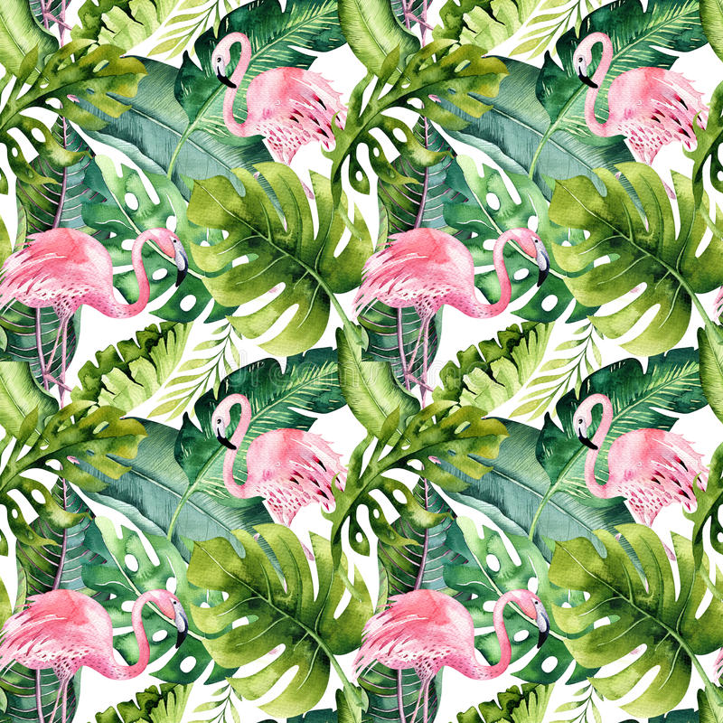 Modèle sans couture d'isolement tropical avec le flamant Dessin tropical d'aquarelle, oiseau rose et palmier de verdure, tropique illustration stock