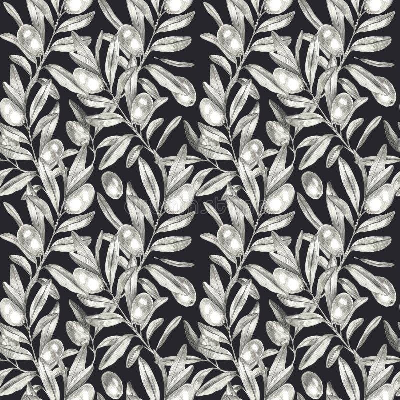 Modèle sans couture d'olives illustration stock