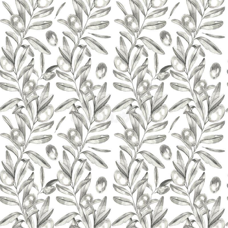 Modèle sans couture d'olives illustration de vecteur