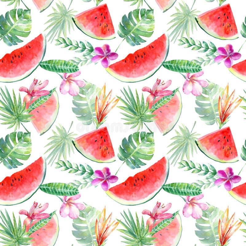 Modèle sans couture d'une pastèque, d'un plumeria, d'une paume et d'un monstera floraux illustration de vecteur