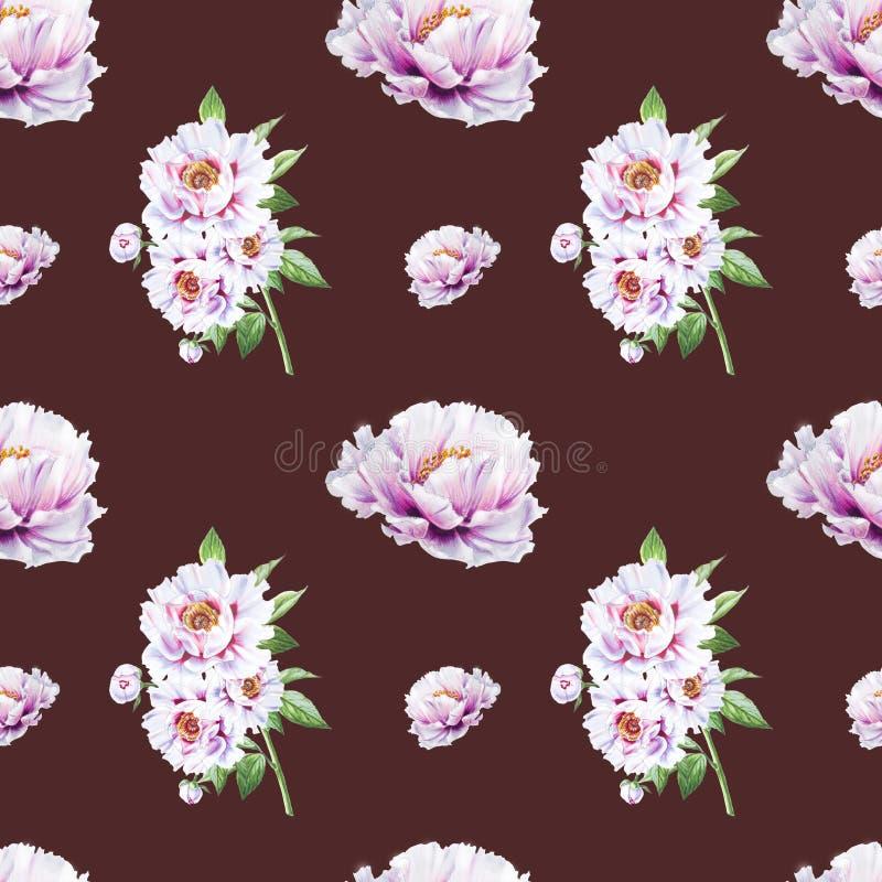 Modèle sans couture de belle pivoine blanche Bouquet des fleurs Texture florale Dessin de marqueur illustration libre de droits