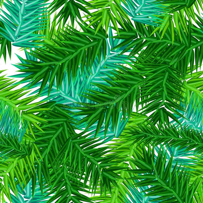 Modèle sans couture de branches succulentes vertes de sapin sur le blanc illustration libre de droits