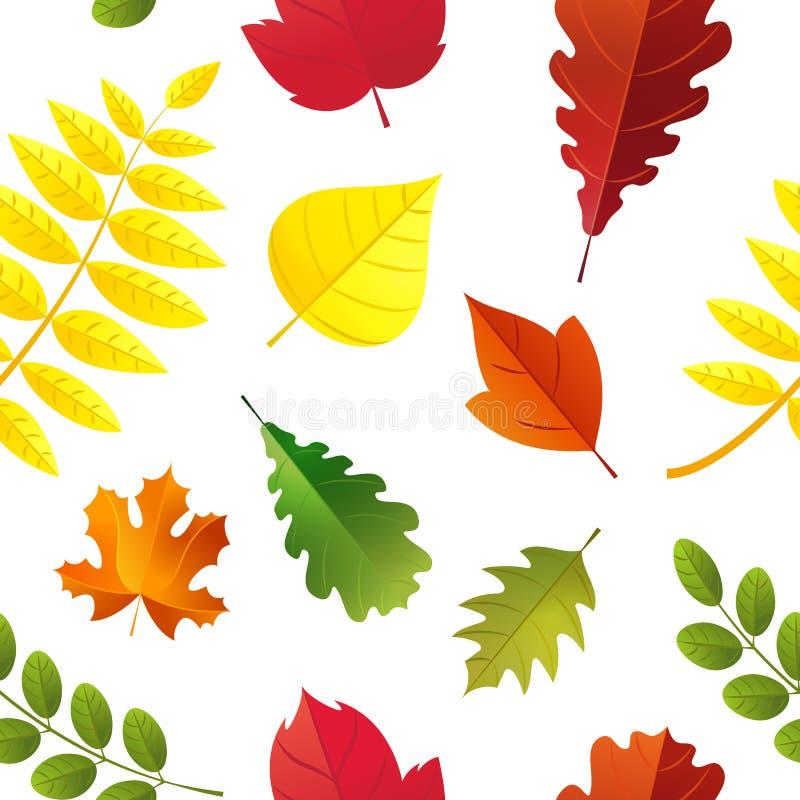Modèle sans couture de feuilles d'automne d'isolement sur le fond blanc Style plat de chute de bande dessinée colorée de feuille illustration stock