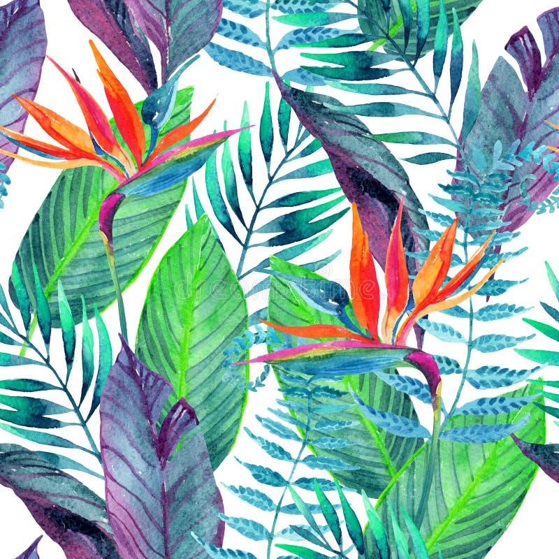 Modèle sans couture de feuilles tropicales Fond de conception florale illustration libre de droits