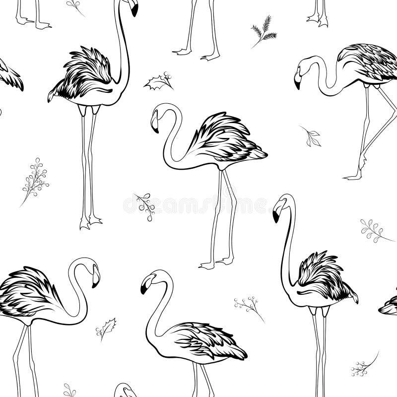 Modèle sans couture de flamant d'oiseaux d'éléments tropicaux exotiques de gui Noir sur le fond blanc illustration stock