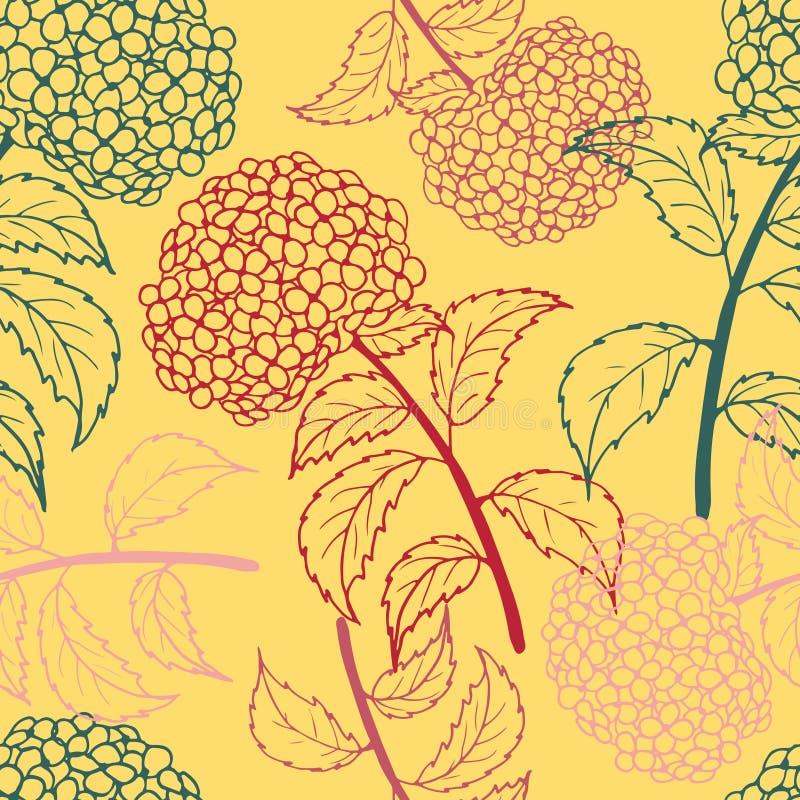 Modèle sans couture de fleur lumineuse avec les hortensias multicolores illustration de vecteur