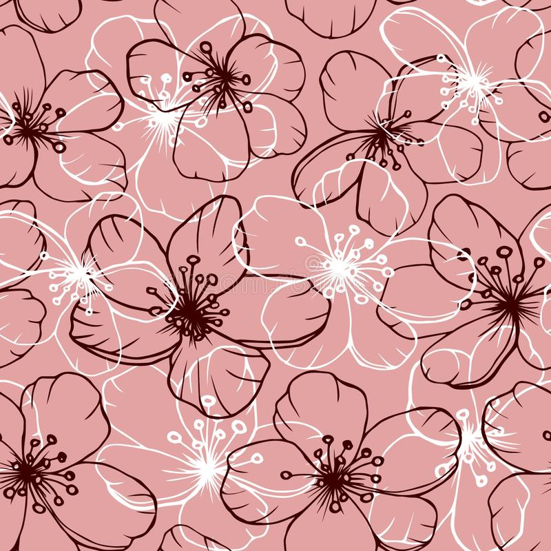 Modèle sans couture de fleurs de cerisier sur le fond rose illustration libre de droits