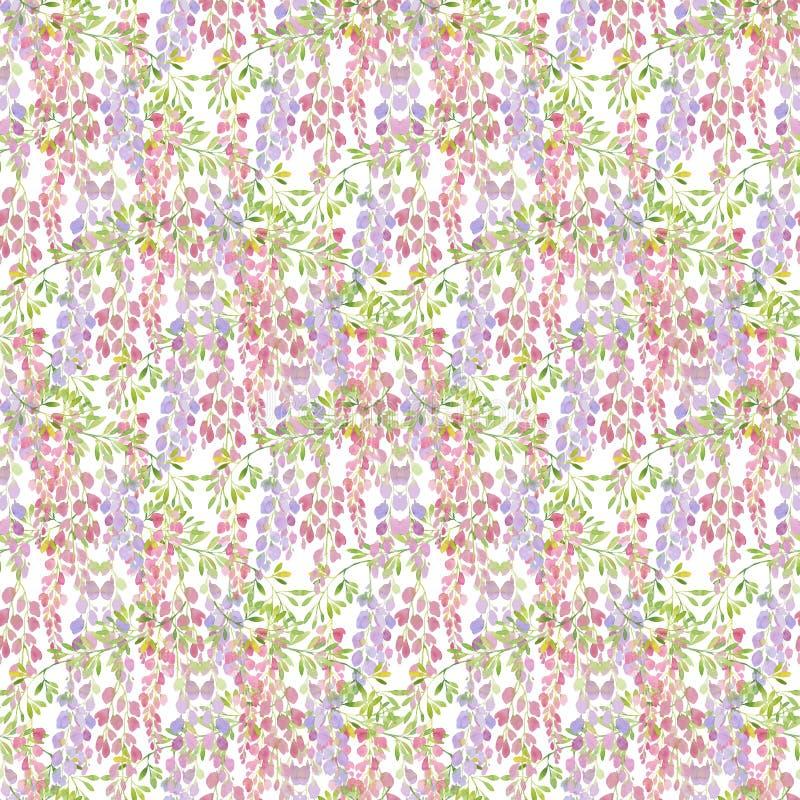 Modèle sans couture de fleurs de glycine, illustration d'aquarelle Dessin pour la conception illustration stock