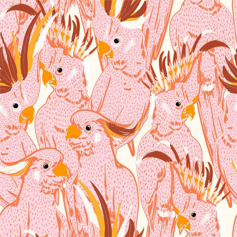 Modèle sans couture de main de dessin de griffonnage de croquis d'oiseaux blancs mignons de cacatoès rose Illustration d'art de v illustration stock