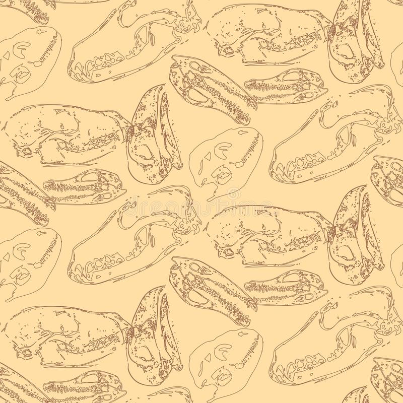 Modèle sans couture de paléontologie avec des os illustration libre de droits