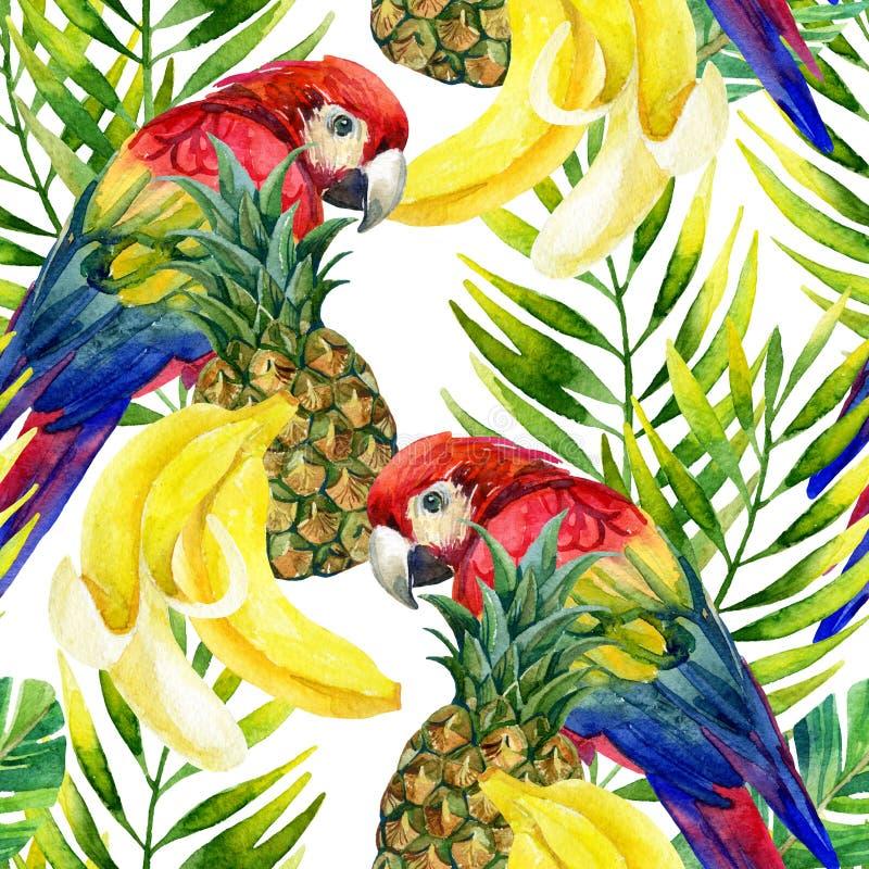 Modèle sans couture de perroquet illustration stock