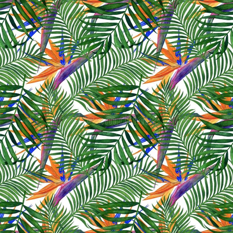 Modèle sans couture de plantes tropicales pour le tissu, le papier peint et le papier d'emballage Illustration d'aquarelle de la  illustration de vecteur