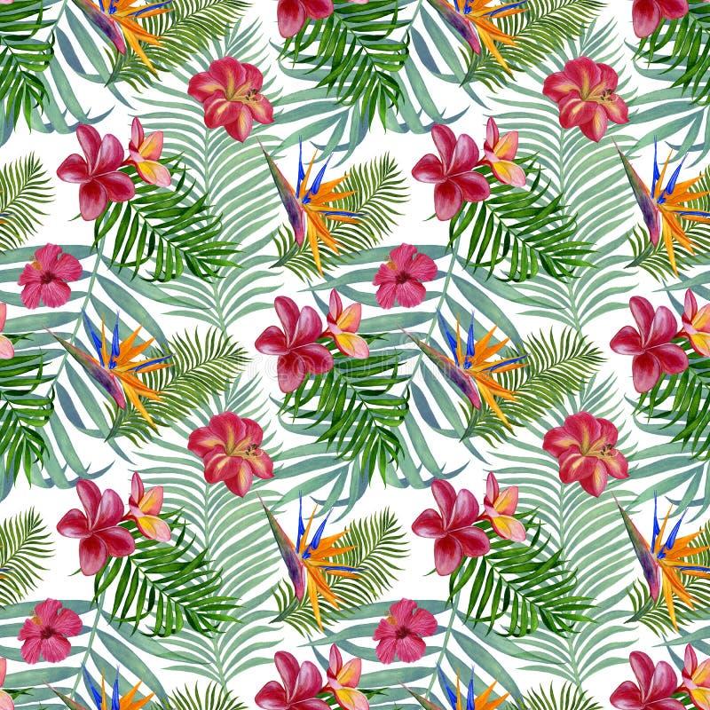 Modèle sans couture de plantes tropicales pour le tissu, le papier peint et le papier d'emballage Illustration d'aquarelle de la  illustration stock