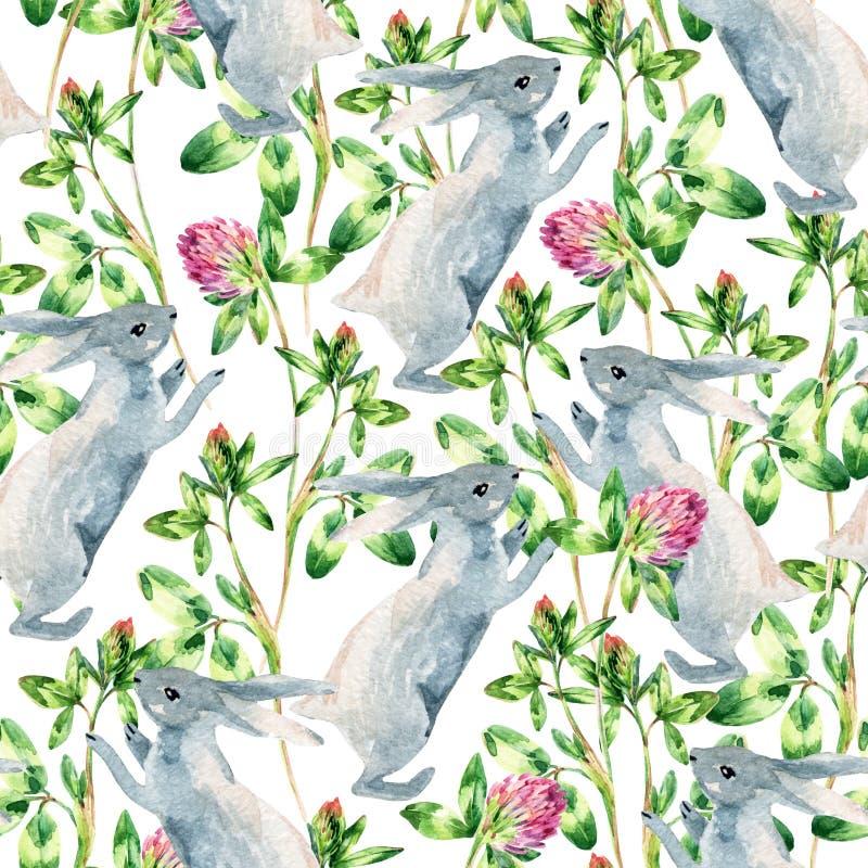 Modèle sans couture de pré d'aquarelle avec le lapin, fleur de trèfle illustration de vecteur