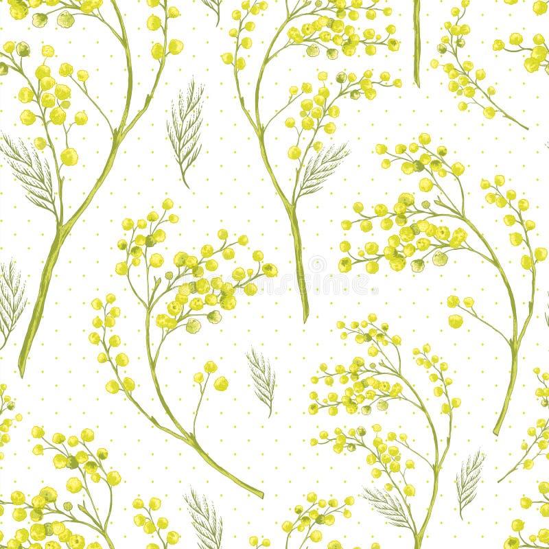 Modèle sans couture de ressort avec le brin de la mimosa illustration libre de droits