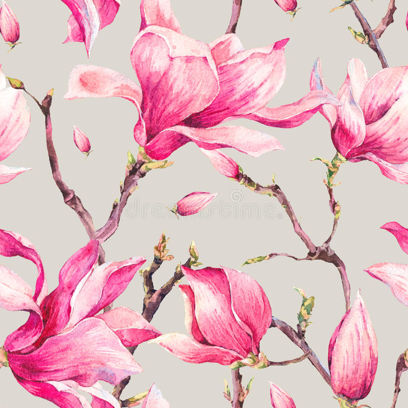 Modèle sans couture de ressort floral d'aquarelle avec la magnolia illustration libre de droits