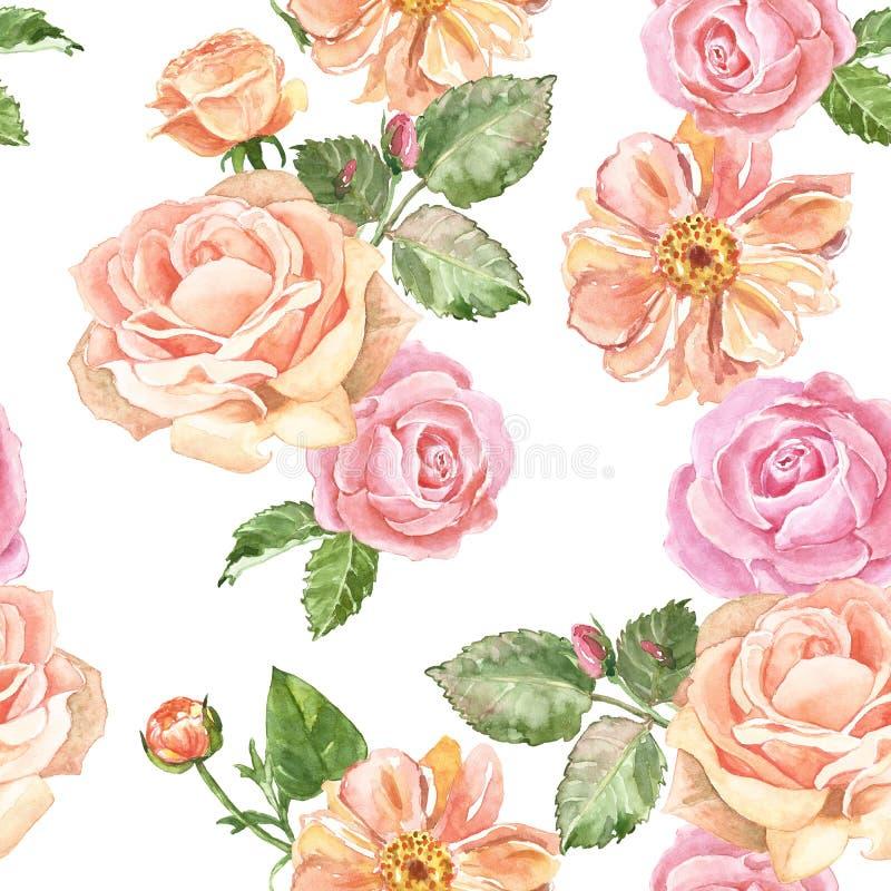 Modèle sans couture de roses d'aquarelle dans le style de cru Fleurs roses en pastel de jardin sur le fond blanc Copie lumineuse  illustration libre de droits