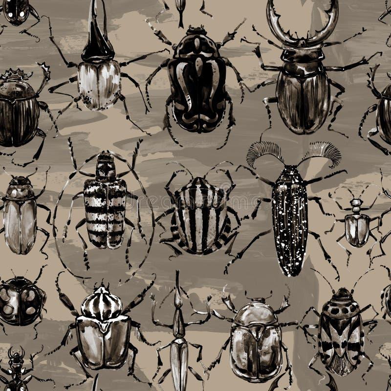 Modèle sans couture de scarabées d'aquarelle illustration stock