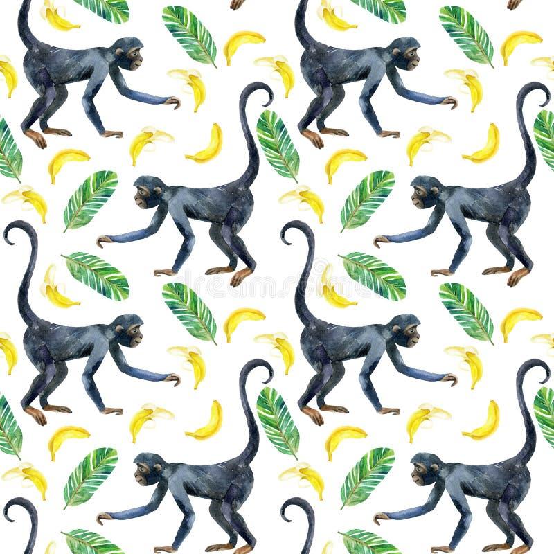Modèle sans couture de singe illustration libre de droits