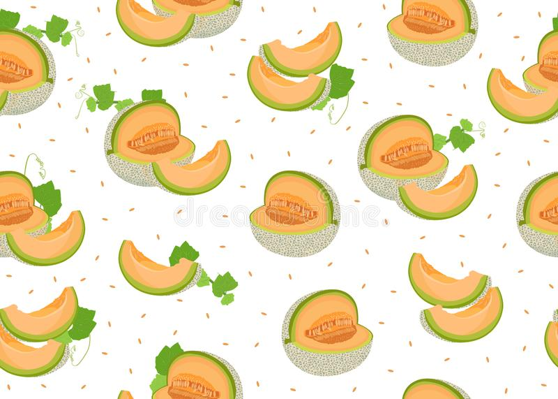 Modèle sans couture de tranche de melon sur le fond blanc avec la graine, fond frais de modèle de melon de cantaloup, vecteur de  illustration libre de droits