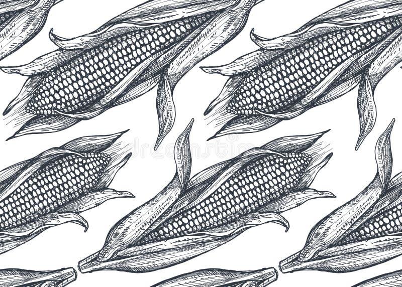 Modèle sans couture de vecteur avec du maïs esquissé tiré par la main illustration libre de droits