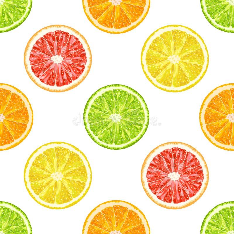 Modèle sans couture de vecteur des tranches d'agrume Orange, citron, limette illustration libre de droits