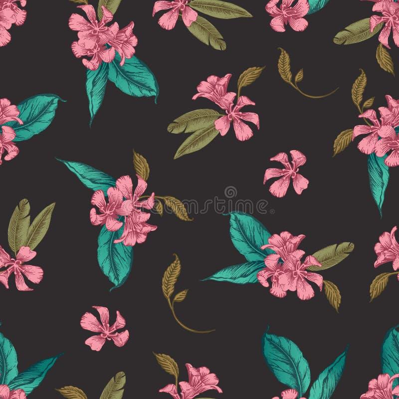 Modèle sans couture de vecteur de fleur romantique illustration de vecteur