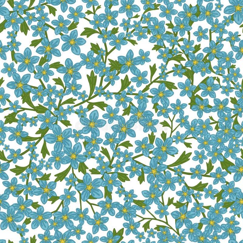 Modèle sans couture de vecteur rétro, saxifrage de fleurs Suffisances, papier peint, textures de surface illustration de vecteur