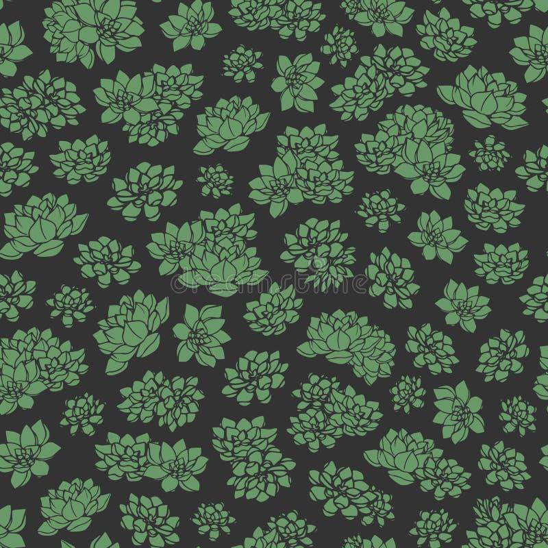Modèle sans couture de vecteur de succulents tirés par la main de vert sur le fond noir Fond de conception florale?, contexte, co illustration libre de droits