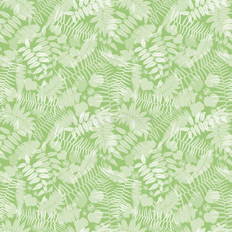 Modèle sans couture de vert de vecteur avec les fougères transparentes, les feuilles et la fleur sauvage Approprié au textile, à  illustration stock